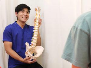 骨模型を持って説明する施術者